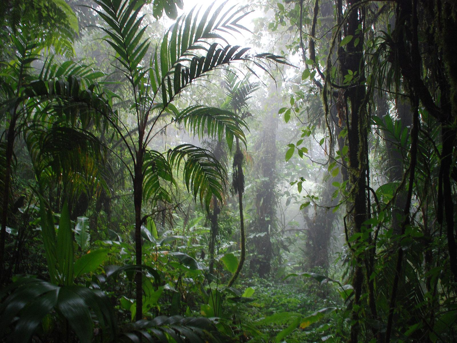 Bezienswaardigheden van Costa Rica  reisgraagnl